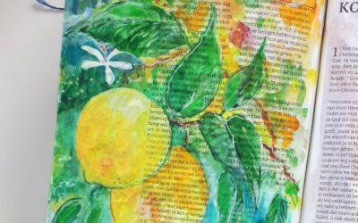 Citrus – Volharden
